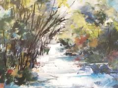 """Bubbling stream"" by Di White"