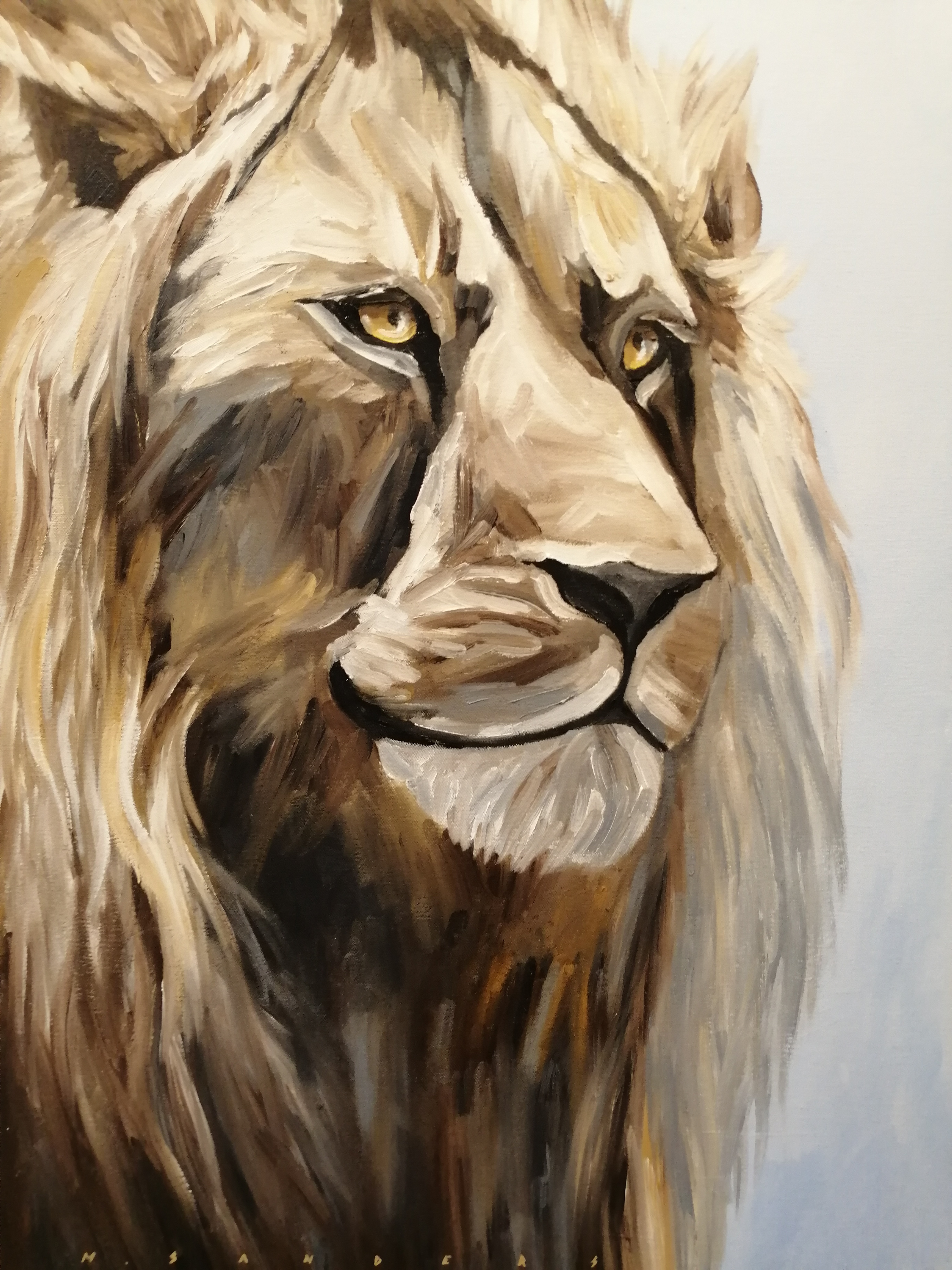 """Lion"" by M. Sanders"